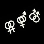 hetero gay bi lesbienne trans
